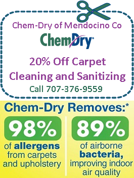 Chem-Dry Coupon clean and sanitize